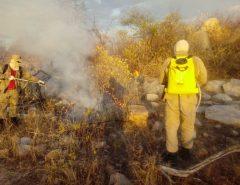 Após três dias, bombeiros controlam incêndio florestal na região Oeste potiguar