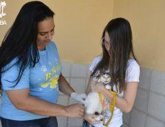 ATENÇÃO! Prefeitura realiza campanha de vacinação antirrábica