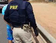 Homem procurado pela justiça é preso pela PRF na BR-304, em Macaíba