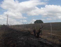 Cosern alerta para o risco de queimadas próximo à rede elétrica e dá dicas de segurança no uso de energia no campo
