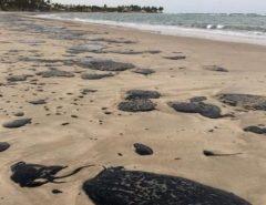 Boletim aponta praias da Grande Natal próprias para banho, mas recomenda evitar locais com as manchas