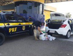 Dupla é presa pela PRF por tráfico de cocaína