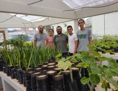 EAJ-UFRN emprega tecnologias para a produção de mudas e reflorestamento de espécies alvo do extrativismo intensivo no semiárido potiguar