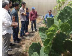 Agricultura 4.0: equipe do TADS visita EMPARN para ações do Projeto PalmaS