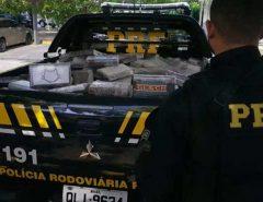 PRF apreende mais de meia tonelada de cocaína em Alagoas que seria entregue no RN
