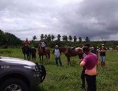 Polícia Militar encerra bolão de vaquejada em Macaíba e Bombeiros autuam responsáveis