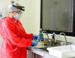 Instituto de Medicina Tropical realiza quase 6 mil testes da covid-19