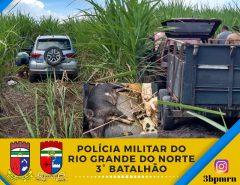 3º BPM recupera veículos e resgata animais em Monte Alegre/RN