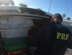 PRF detém dois homens com carga de camarão sem nota fiscal em Macaíba