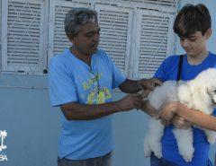 Informe Publicitário: Campanha de vacinação antirrábica começa em Macaíba