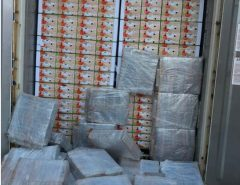 PF e Receita Federal apreendem 704 kg de cocaína em meio a carga de mangas no porto de Natal
