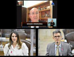 Deputados ressaltam necessidade de políticas públicas para crianças e turismo